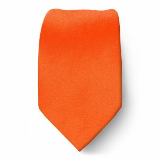 Orange Boys Solid Tie Ties
