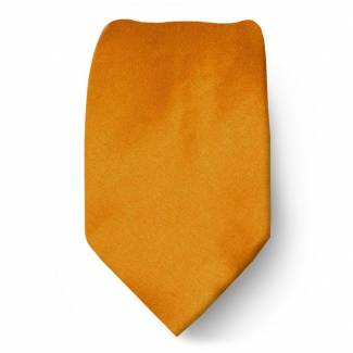 Bronze Boys Solid Tie Ties