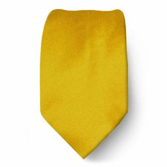 Gold Boys Solid Tie Ties
