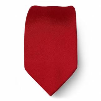 Red Boys Solid Tie Ties