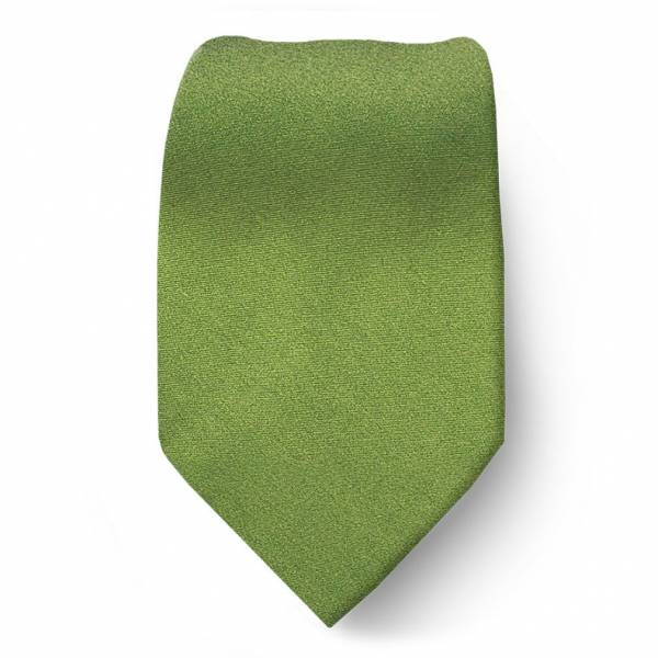 Olive Boys Solid Tie Ties