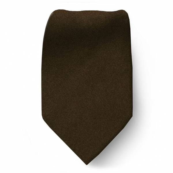 Brown Boys Solid Tie Ties