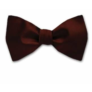 Satin Silk Bow Tie