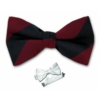 Pre Tied College Striped Bow Tie