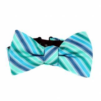 Pre Tied Aficionado Bow Tie Pre Tied