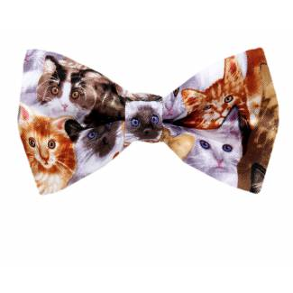 Mixed Cats Pre Tied Novelty