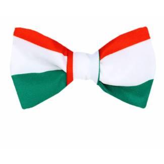 Italian Flag Self Tie Bow Tie Self Tie