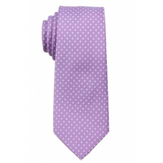 Boys Dot Tie Ties