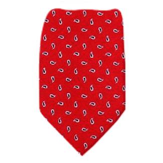 Paisley Extra Long Silk Tie Ties