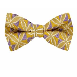 Boys Pattern Pre Tied Bow Tie Pre Tied Bow Tie