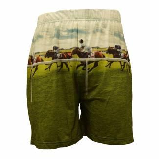 Horse Racing boxer shorts Boxer Shorts