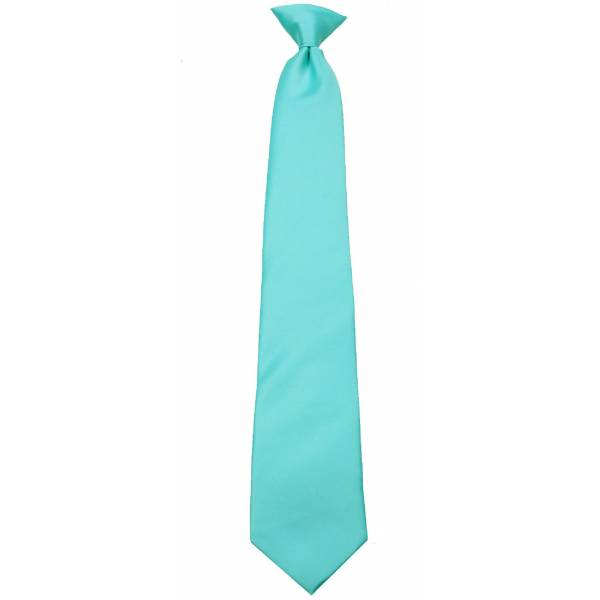 Boys Aqua Blue Clip on Tie Clip On Ties