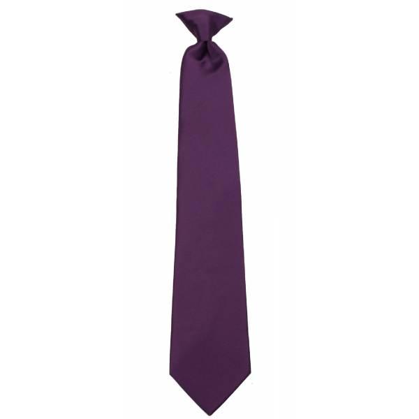 Boys Eggplant Clip on Tie Clip On Ties